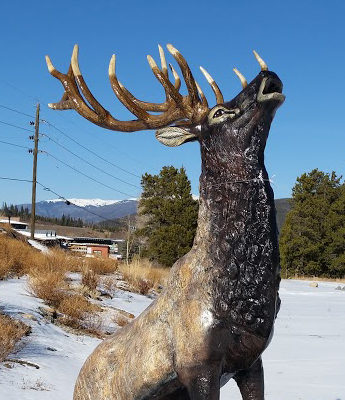 hc3735-elk-rock-head-up-natural-right-side-thumb